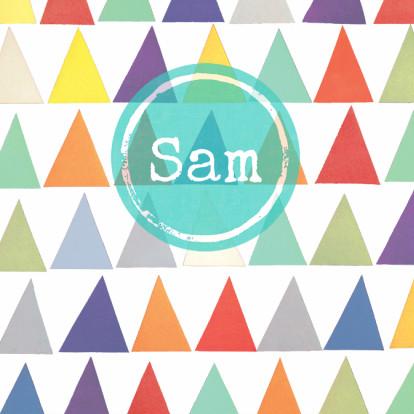 driehoek-geboortekaartje-kleur