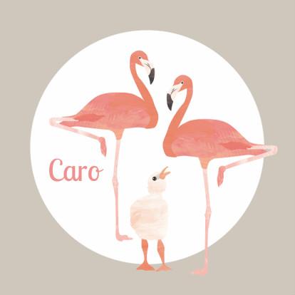 flamingo-geboortekaartje