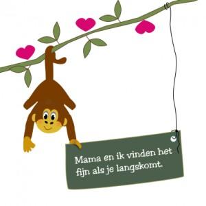 little-monkey-1